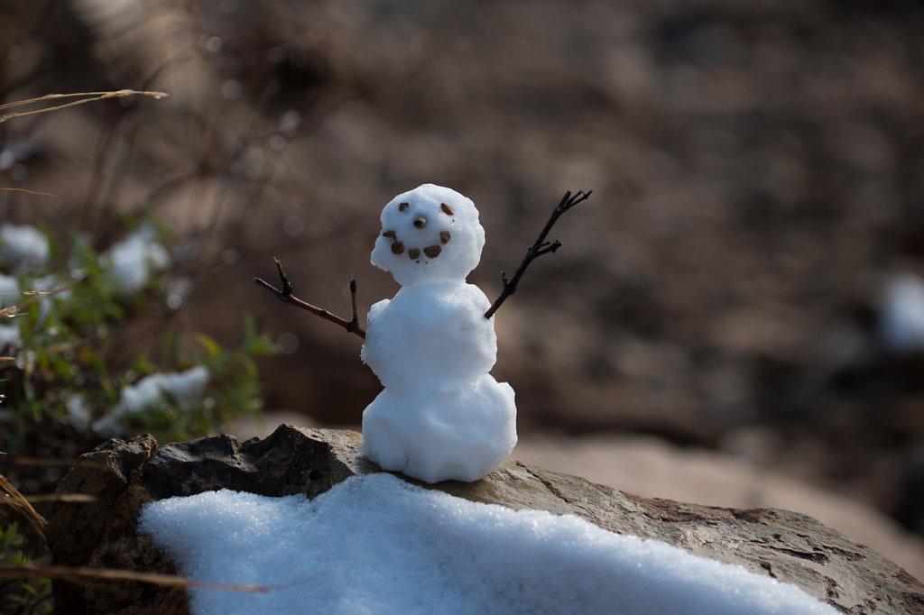 snow-0115-061.jpg