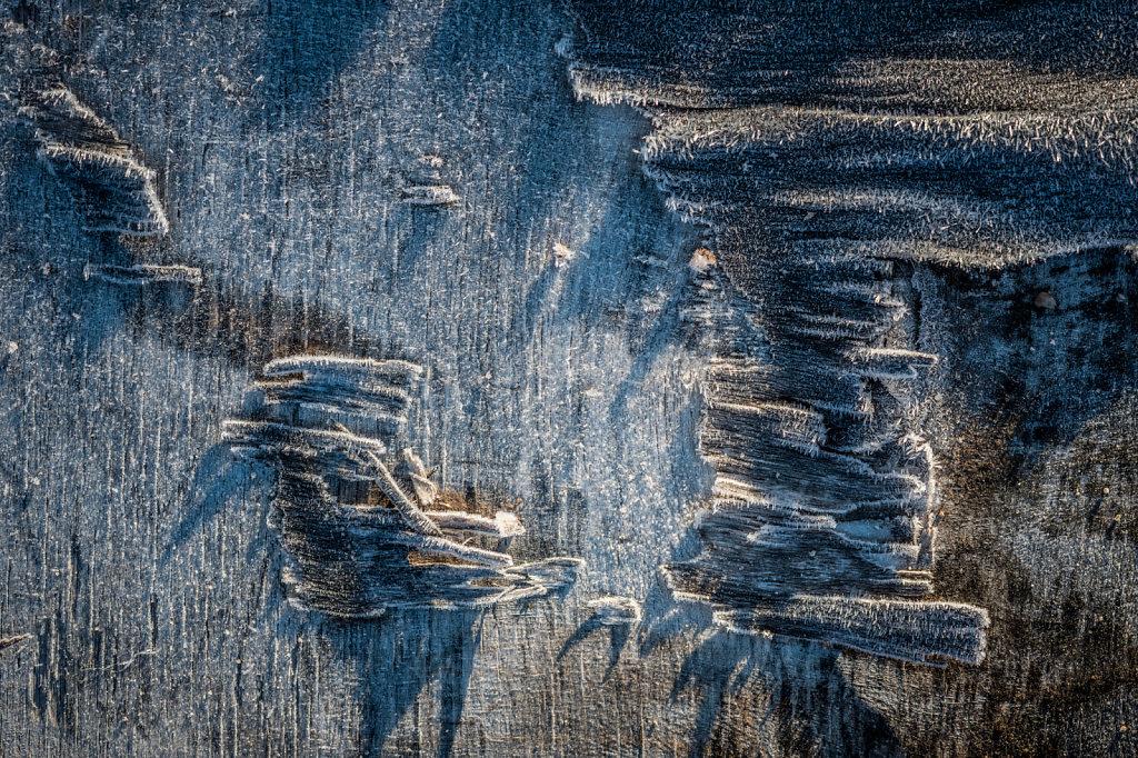 frost-wood-1212-011.jpg