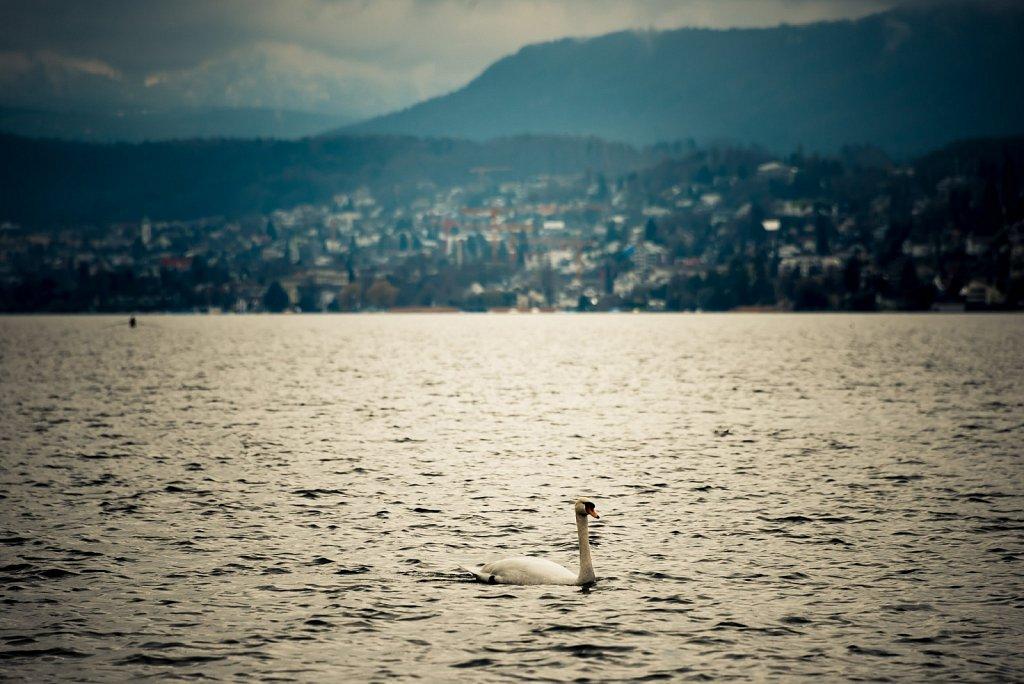 Zurich-0318-0294.jpg