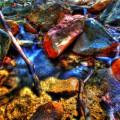 madera-canyon_1011_095_900px