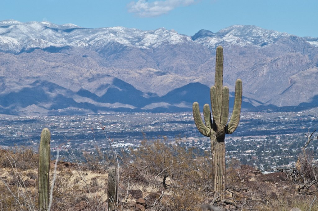 Tucson - Santa Catalinas